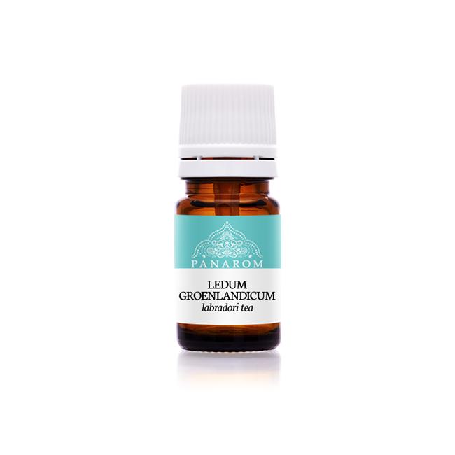 Labradori tea (Ledum groenlandicum) illóolaj